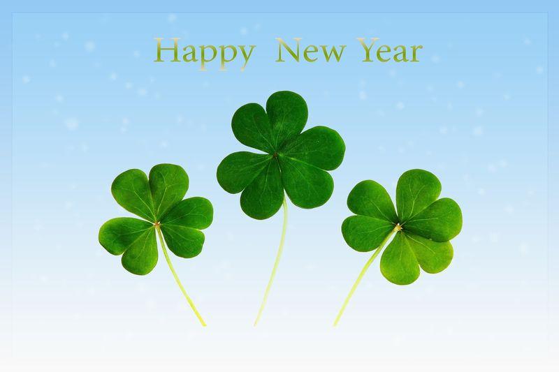 """Drei schöne grüne Kleeblätter vor einem hellblauen Hintergrund mit dem Text """"Happy new Year"""""""